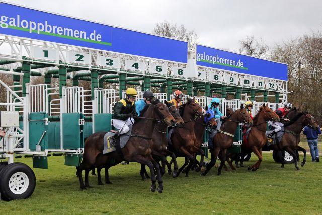 Pferde und Jockeys beim Start  in Bremen. www.galoppfoto.de - Sabine Brose
