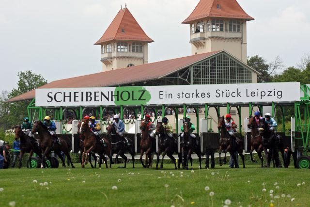 Pferde und Jockeys beim Start in Leipzig. www.galoppfoto.de - Frank Sorge