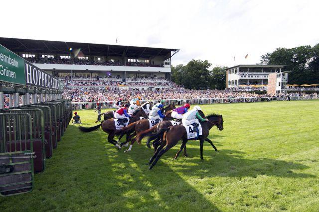 Am Samstag gibt es wieder Rennen in Hoppegarten: Pferde und Jockeys beim Start zum 124. Grossen Preis von Berlin. www.galoppfoto.de - Frank Sorge