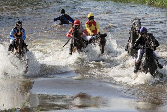 Plitsch, Platsch ... in Bad Harzburg gehen die Pferde und Jockeys wieder im Seejagdrennen baden ... www.galoppfoto.de - Frank Sorge