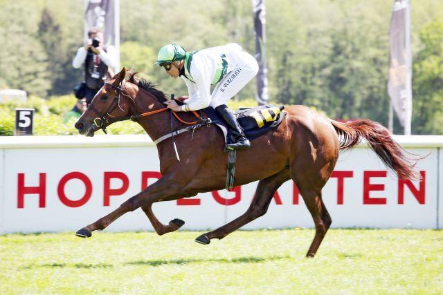Preciosa kommt zu einem souveränen Erfolg. www.galoppfoto.de - Sabine Brose