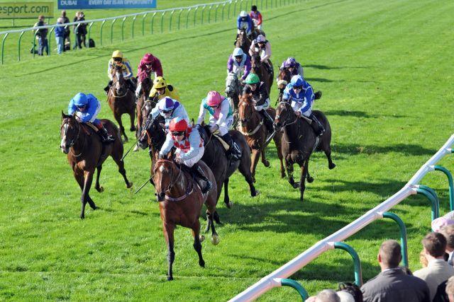 Red Jazz bei seinem Sieg in den Challenge Stakes (Gr. II) in Newmarket. www.galoppfoto.de - JJ Clark