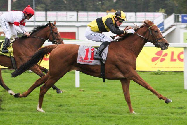 Reine Margique Siegerin im Nereide Rennen. Foto: Sebastian Höger