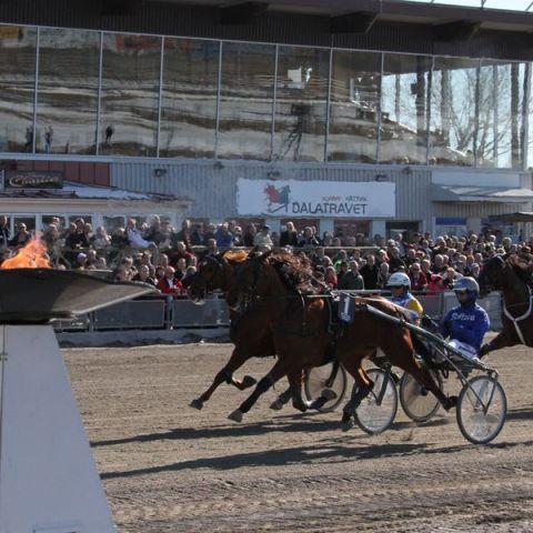 Romme in Schweden - dort gibt es noch Pferderennen. Die Zuschauer muss man sich aber wegdenken. Foto: offiziell
