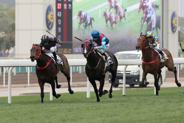 Ruthven (Mi.) empfiehlt sich für das Hong Kong Derby. Foto: HKJC