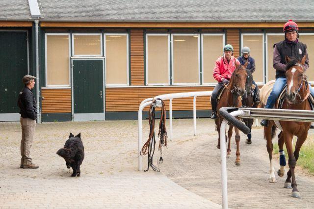 """Jean-Pierre """"Chippi"""" Carvalho mit Hofhund in der Trainingszentrale in Bergheim, in der es alles gibt (inkl. Labor nebst Röntgengerät) - nur keine postalische Adresse. Foto: Sebastian Höger"""