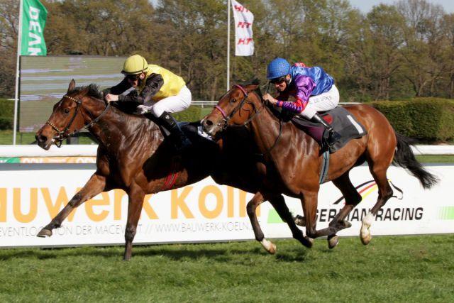 La Saldana gewinnt mit Jozef Bojko das Schwarzgold-Rennen vor Bourree. www.galoppfoto.de - Sandra Scherning