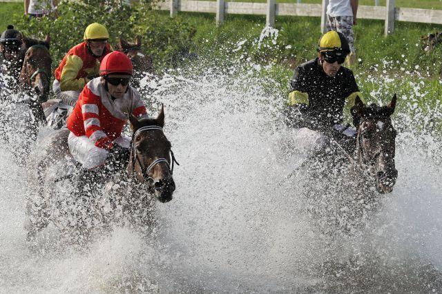So war's im letzten Jahr: Bad Harzburg, Pferde und Jockeys im See. Siegerin Indian Sun mit Cevin Chan (rechts) und Supervisor mit Julian Marinov. www.galoppfoto.de