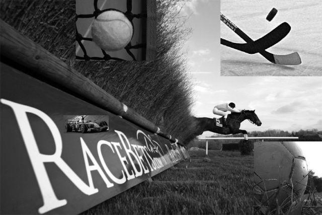 Die Sportwette als Zukunftsmodell? www.galoppfoto.de