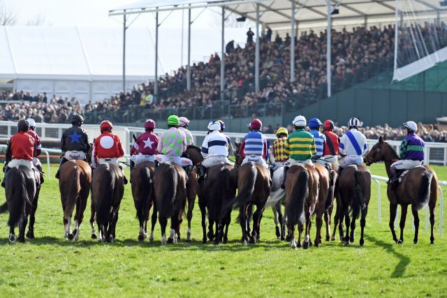 Start vor vollem Haus in Cheltenham: Dieses Bild wird es weltweit länger nicht mehr auf einer Pferderennbahn geben. www.galoppfoto.de - JJ Clark
