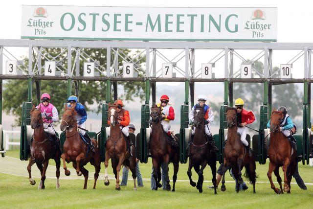 Start zu den Rennen beim Ostsee-Meeting in Bad Doberan. www.galoppfoto.de