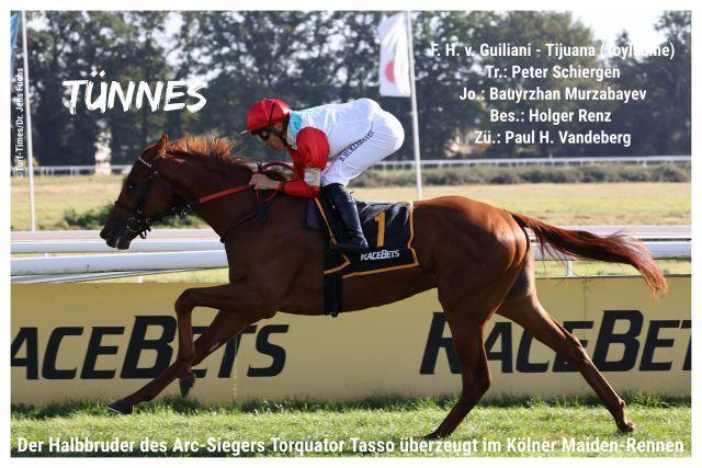 Tünnes, der Halbbruder des Arc-Siegers Torquator Tasso gewinnt in Köln.  @Turf-Times/Dr. Jens Fuchs
