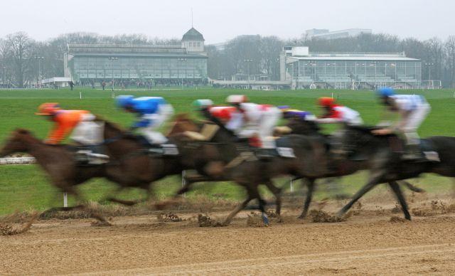 Winterrennen auf dem Prüfstand: Laufen die Pferde in 2014 in Dortmund und Neuss jetzt montags oder mittwochs? www.galoppfoto.de - Marius Schwarz