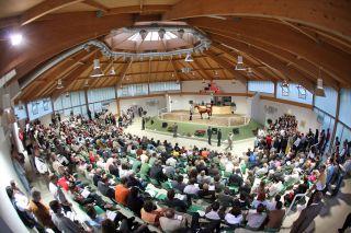 Die Baden-Badener Auktionsgesellschaft (BBAG) veranstaltet drei Auktionen im Jahr. Foto www.galoppfoto.de