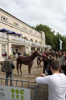 Wer nicht aufpasst, wird mitgeduscht - mittendrin statt nur dabei am Absattelring. Foto: www.galoppfoto.de - Sabine Brose
