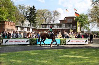 Bester Bick auch für viel Publikum bietet der Hoppegartener Führring. Foto: www.galoppfoto.de - Sabine Brose/Sorge