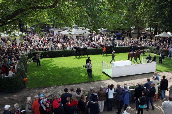 Der Ort für die Sieger und Platzierten. Foto: www.galoppfoto.de - Frank Sorge