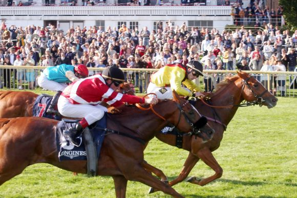 Der Derbyzweite Torquator Tasso untermauert seine Klasse und siegt vor Dicaprio. www.galoppfoto.de - Frank Sorge