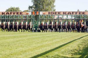 Das Hamburger Derby-Meeting 2011 wird nach derzeitigem Stand mit sech Renntagen geplant. www.galoppfoto.de