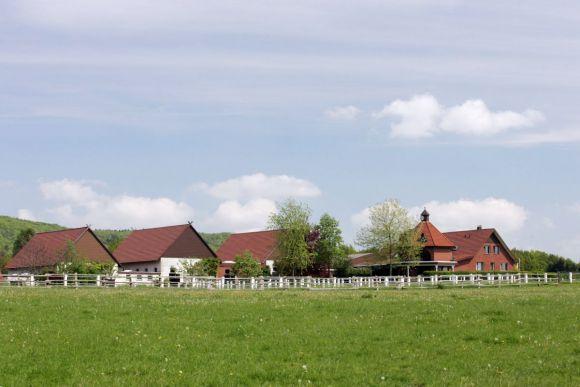 Die Ansicht des Gestüts Auenquelle. www.galoppfoto.de