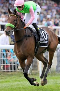 Und Donjah: Die frischgebackene Gr. II-Sieger im Gran Premio del Jockey Club. Foto (Archiv) www.galoppfoto.de - Sandra Scherning