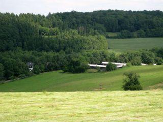 Blick von der Berbbahn aus. Foto Gestüt Ohlerweiherhof