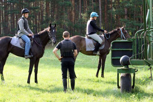 Kellemoi de Pepita (links) beim Training an der Startmaschine 2010. www.galoppfoto.de - Frank Sorge
