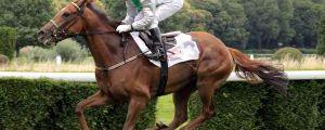 Lips Poison mit Davy Bonilla gewinnt die 91. German 1.000 Guineas. www.galoppfoto.de - Sandra Scherning