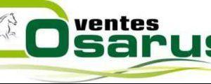 Osarus-logo