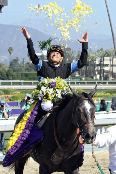 Sag's mit Blumen ... Mizdirection mit Mike Smith nach dem Breeders' Cup Turf Sprint. www.galoppfoto.de - Petr Guth