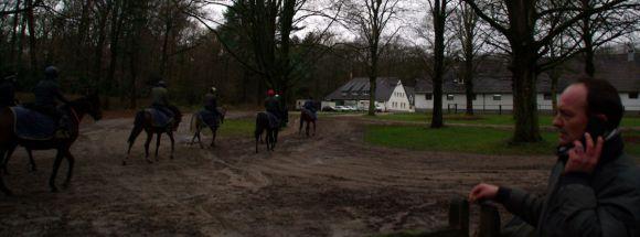 Das Lot auf dem Weg zurück zum Stall, der Grafenberg zeigt sich herbstlich unterkühlt. www.dequia.dewww.dequia.de