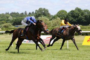 Der RaceBets.de - Derby Trial Frühjahrspreis
