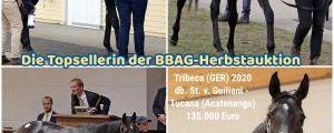 Die Topsellerin der BBAG-Herbstauktion 2021