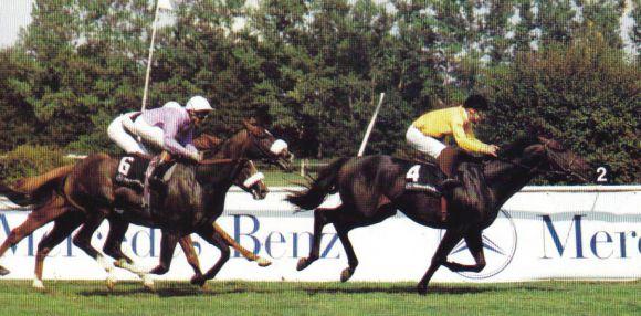 Turfkönig hieß 1990 der Sieger vor Dashing Blade beim ersten Bayerischen Zuchtrennen mit Gr. I-Status. 1990. Foto Archiv Zeno