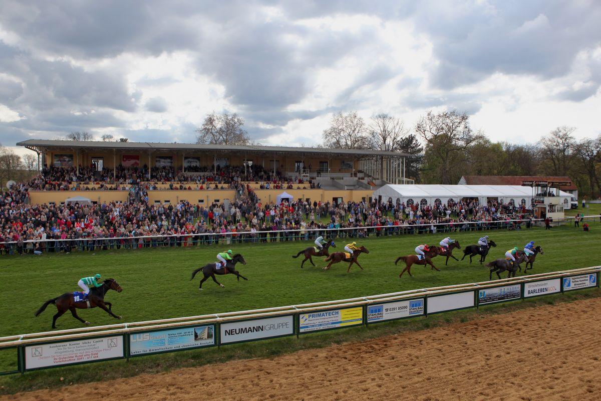 Magdeburg Pferderennen